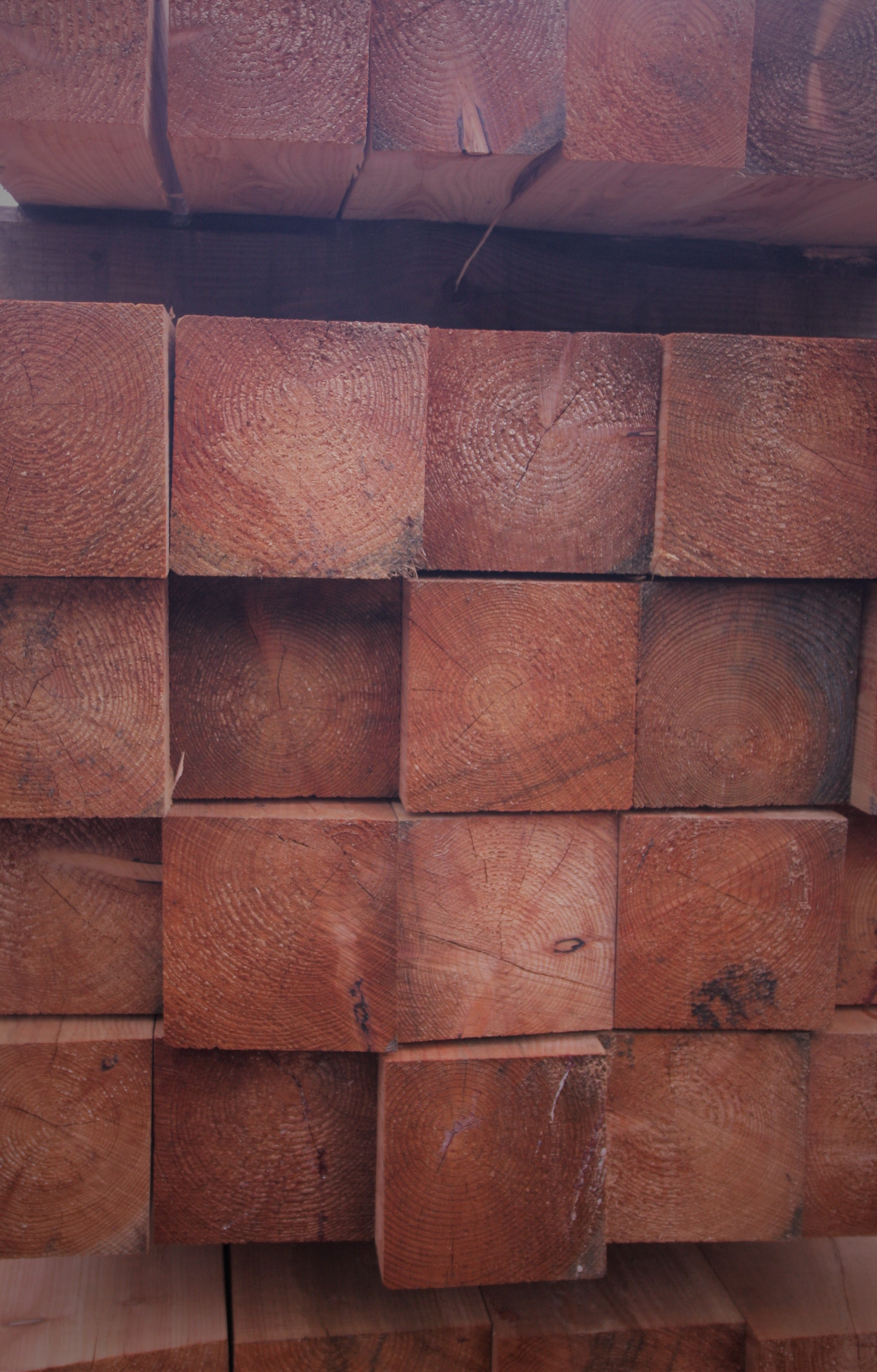 Sawn Timber Supplier