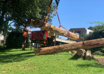 Graham's Logs Delivering Timber for Play Equipment